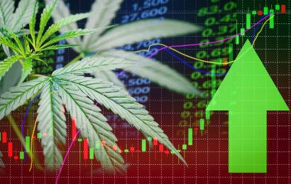 4 Marijuana Stocks For The Cannabis Comeback