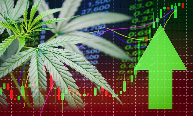 The Current Cannabis Sector Rally Is Pointing To Another Breakout