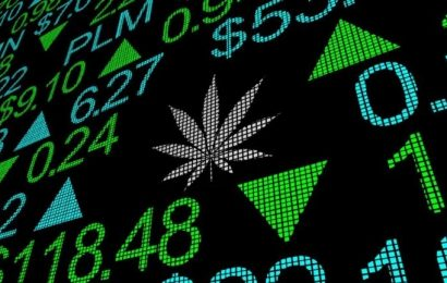 The 10 Hottest Weed Stocks On The Market For May